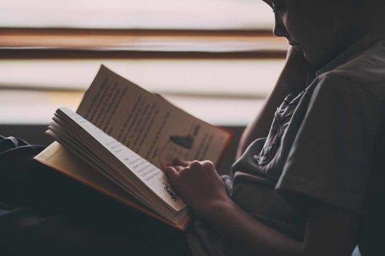 (literaire) roman