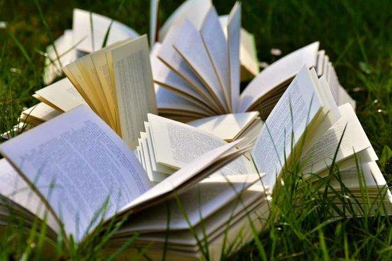 fictie verhalenbundel