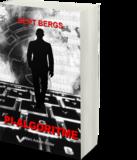 PI-ALGORITME   BERT BERGS_