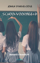 SCHOOLVOORBEELD   Johan D'Haveloose