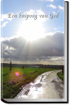 Een knipoog van God (HB) | Boukje Prins