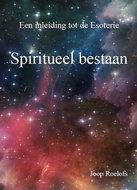 Spiritueel bestaan   Joop Roelofs